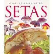Atlas ilustrado de las setas / Illustrated Atlas of Mushrooms by Jean-Louis Lamaison