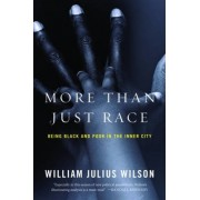 More Than Just Race by William Julius Wilson
