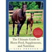 The Ultimate Guide to Horse Feed, Supplements, and Nutrition-