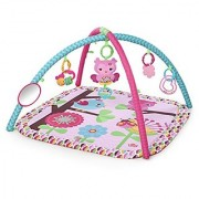 Bright Starts Charming Chirps Activity Gym Pretty In Pink
