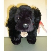 35 Centimeter Keel Toys Black Spaniel Soft Toy Dog Dexter Exclusive To Toyland By Keel Toys