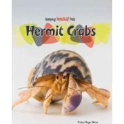 Hermit Crabs by Tristan Boyer Binns