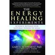 The Energy Healing Experiments by PH D Gary E Schwartz