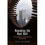 Remaking the Rust Belt: The Postindustrial Transformation of North America