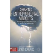 Shaping Entrepreneurial Mindsets by Jordi Canals