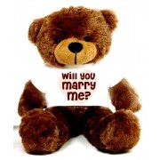 Brown 2 feet Big Teddy Bear wearing a Will You Marry Me T-shirt