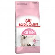 Royal Canin 10 kg Kitten 36 pienso para gatos