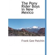 The Pony Rider Boys in New Mexico by Frank Gee Patchin