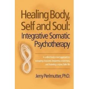 Healing Body, Self and Soul by Jerry Perlmutter Phd