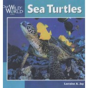 Sea Turtles by Lorraine A. Jay