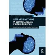 Research Methods in Second Language Psycholinguistics by Bill VanPatten