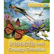 Explorers: Insects and Creepy-Crawlies by Jinny Johnson