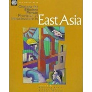 Choices for Efficient Private Provision of Infrastructure in East Asia by World Bank