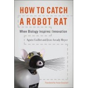 How to Catch a Robot Rat by Agnes Guillot