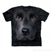 Hi-tech cool trička - Labrador