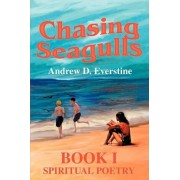 Chasing Seagulls by Andrew D Everstine