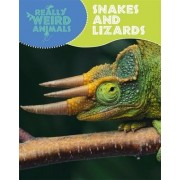 Snakes and Lizards by Clare Hibbert