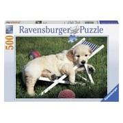 Ravensburger Golden Retriever - Puzzel van 500 stukjes