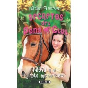 Nieve y el jinete misterioso / Blaze and the Dark Rider by Stacy Gregg