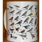 Kubek ornitologiczny