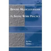 Beyond Multiculturalism in Social Work Practice by Kui-Hee Song