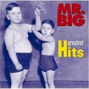 Mr. Big - Greatest Hits (0081227398729) (1 CD)