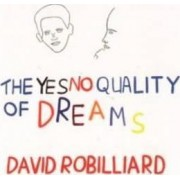 David Robilliard - the Yes No Quality of Dreams by Andrew Wilson