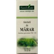Plantextrakt Tinctura de marar (50 ml)