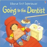 Usborne First Experiences Going To The Dentist by Anna Civardi