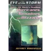 Eye of the Storm by Jeffery Rosenfeld