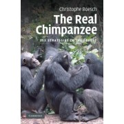 The Real Chimpanzee by Christophe Boesch