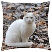 Gato blanco. - Manta Almohada Funda (18
