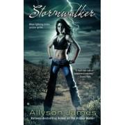 Stormwalker by Allyson James