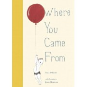 Where You Came From by Julie Morstad