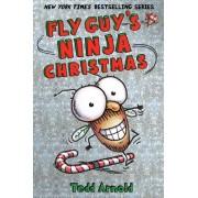 Fly Guy's Ninja Christmas (Fly Guy #16)