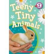 Teeny Tiny Animals by Lexi Ryals