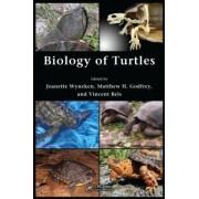 Biology of Turtles by Jeanette Wyneken
