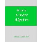 Basic Linear Algebra by Gregor M Olsavsky