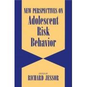 New Perspectives on Adolescent Risk Behavior by Richard Jessor