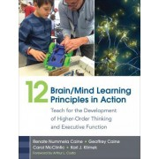 12 Brain/Mind Learning Principles in Action by Renate Nummela Caine