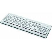Tastatura Fujitsu KB521 ro marble grey