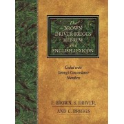 The Brown-Driver-Briggs Hebrew-English Lexicon by E. Brown