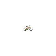 "Bicicleta pentru Copii Koliken 16"" Cool Boy"