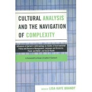 Cultural Analysis and the Navigation of Complexity by Lisa Kaye Brandt