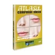Atlasul corpului uman-Mecanismul hranirii - Gustul - mirosul