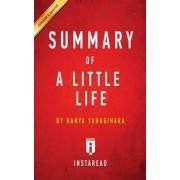 Summary of a Little Life by Instaread Summaries