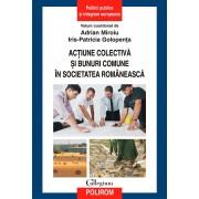 Actiune colectiva si bunuri comune in societatea romaneasca (eBook)
