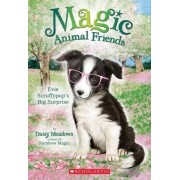 Evie Scruffypup's Big Surprise (Magic Animal Friends #10) by Daisy Meadows