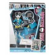 Monster High Picture Day Frankie Stein BBJ77