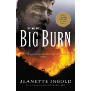 The Big Burn by Jeanette Ingold